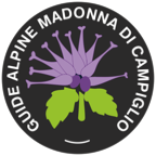 Guide Alpine Campiglio logo